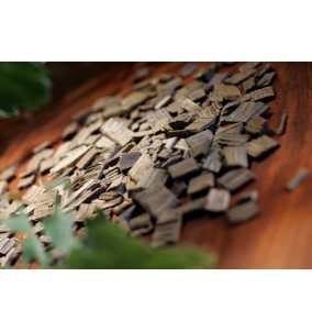 Aschii stejar Francez mediu